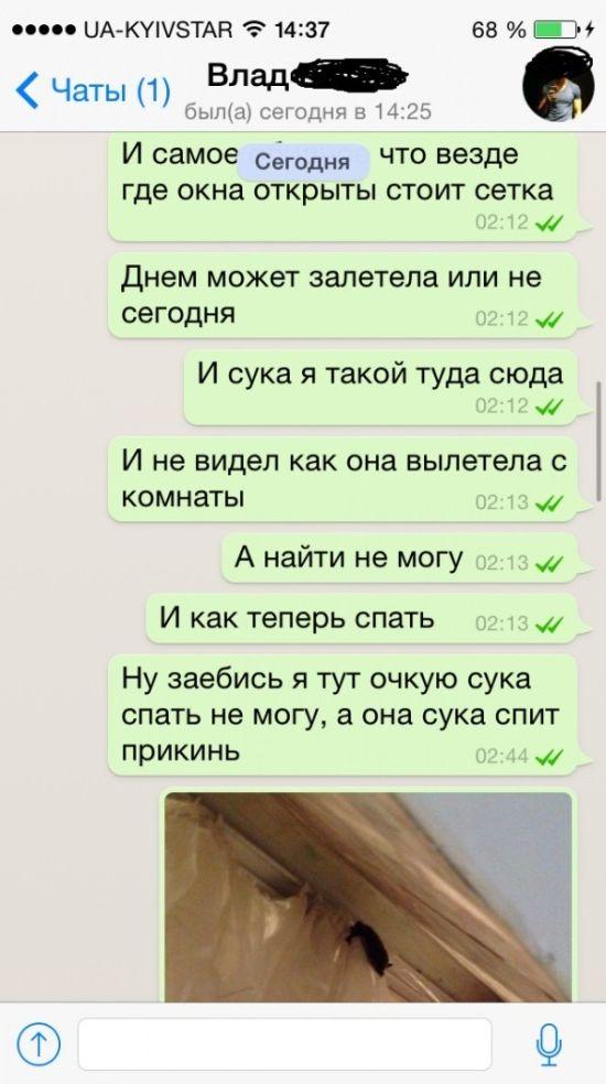 """Жуткий """"незваный гость"""" (7 фото)"""