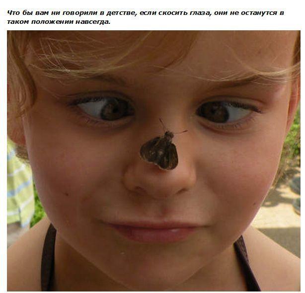Мифы, в которые мы ошибочно верим с раннего детства (14 фото)