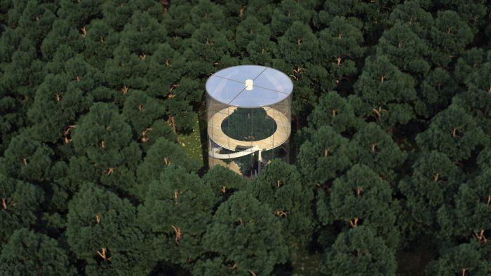 Уникальный проект стеклянного дома в лесу (6 фото)