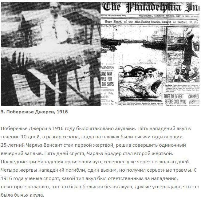 Ужасные нападения акул на человека (7 фото)