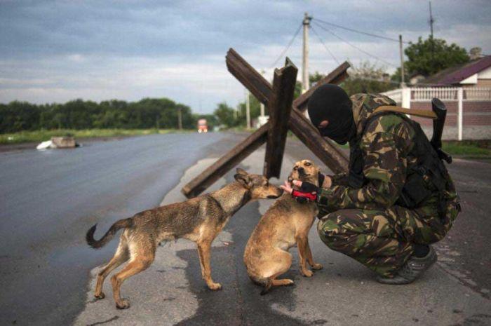 Военные действия в Донбассе без прикрас (89 фото)