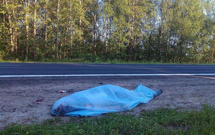 Известный американский велосипедист погиб в России (5 фото)