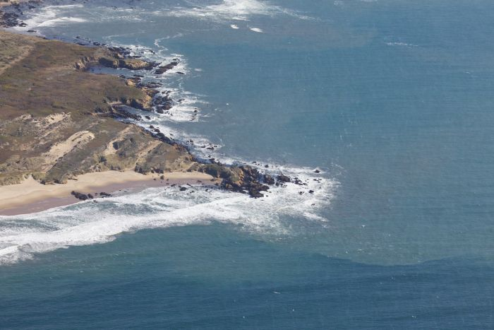 Заброшенный остров (14 фото)