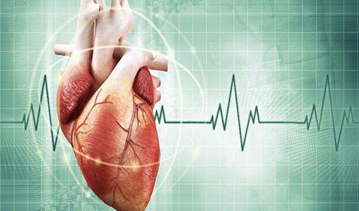 Невероятные факты о сердце человека (20 фото)