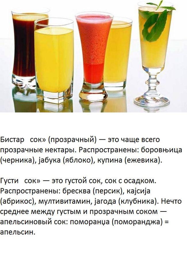Национальные блюда и традиции застолья в Сербии (7 фото)