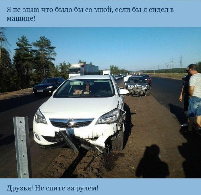 Никогда не садитесь за руль уставшим (5 фото)
