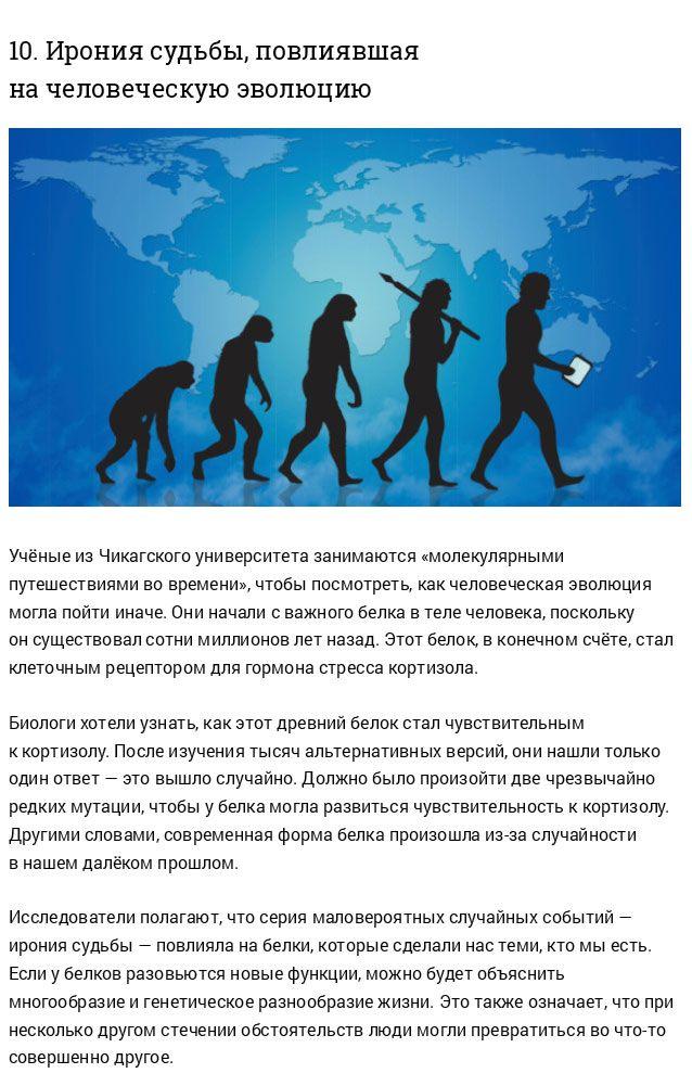 Неизвестные ранее факты об эволюции человечества (17 фото)