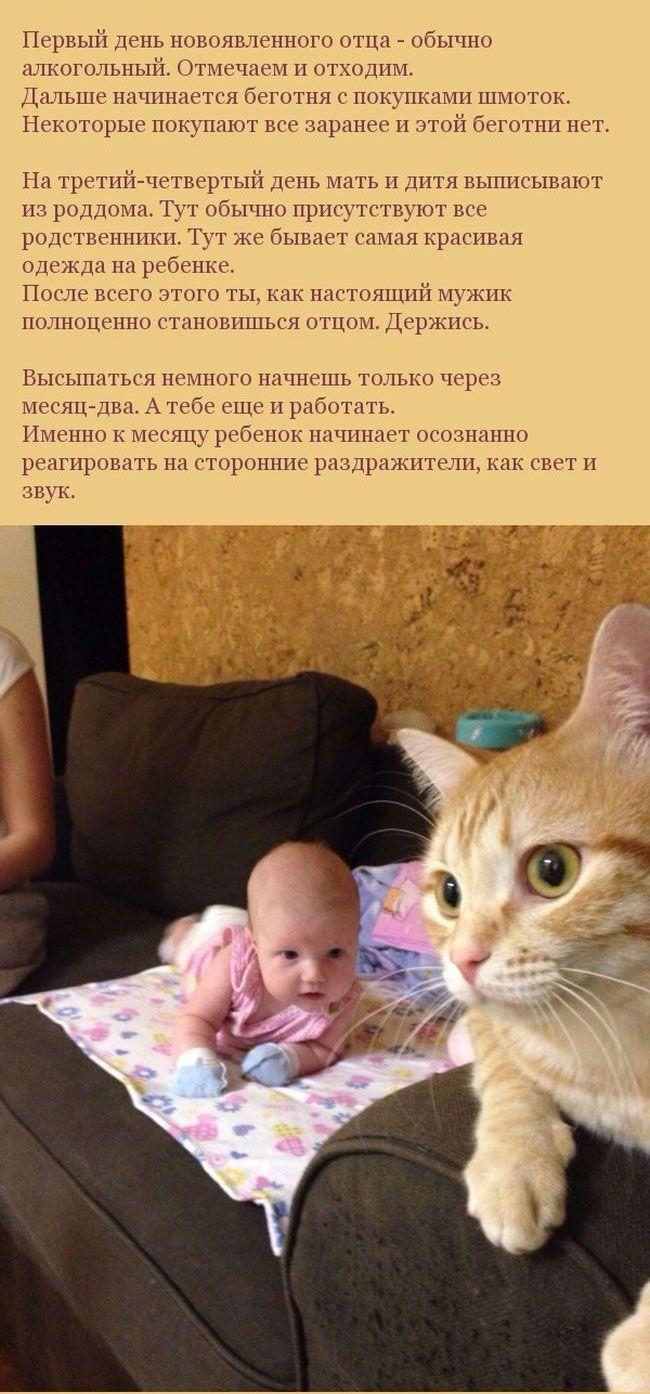 """Что значит """"быть молодыми родителями"""" (13 фото)"""
