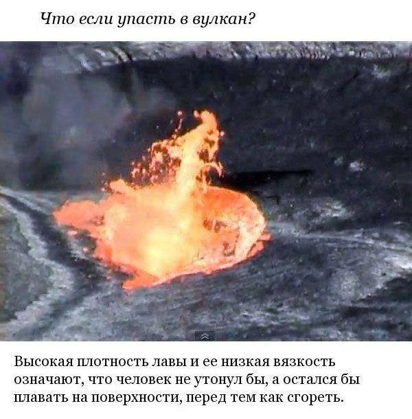 Захватывающие вопросы и предположения ученых (10 фото)