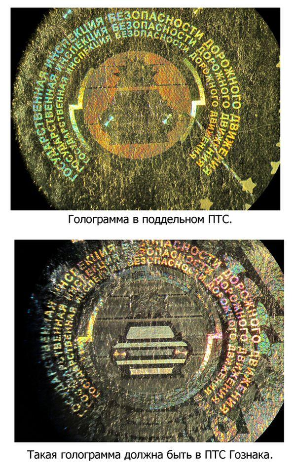 Как различить поддельные ПТС (5 фото)