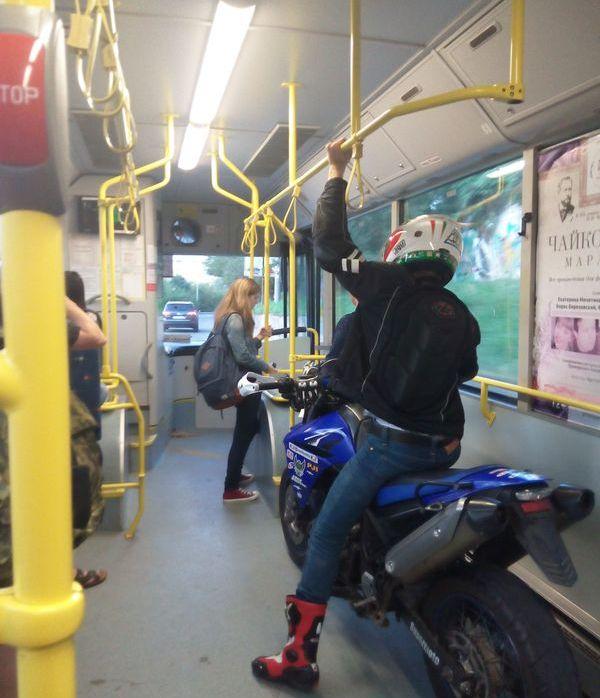 Необычный пассажир общественного транспорта (2 фото)