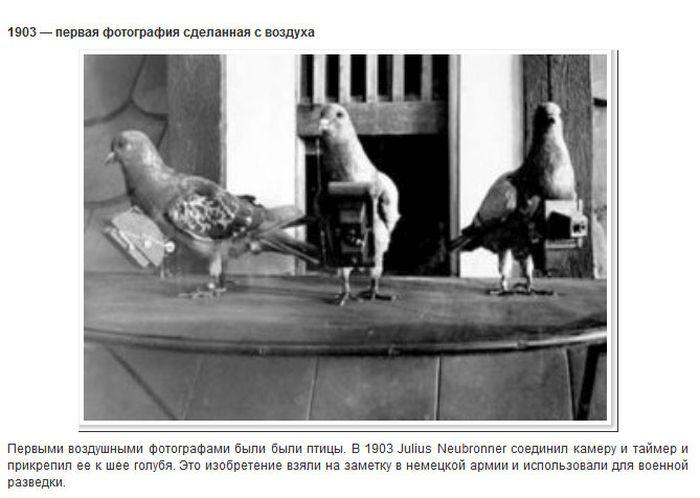 Факты о первых в мире фотографиях (9 фото)