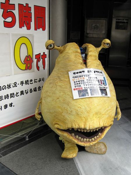 Только в Японии (55 фото)