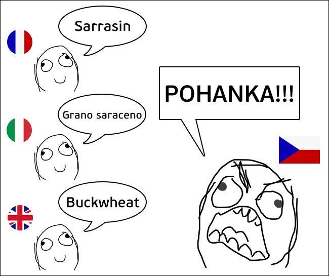 Особенности перевода на суровый чешский язык (10 картинок)
