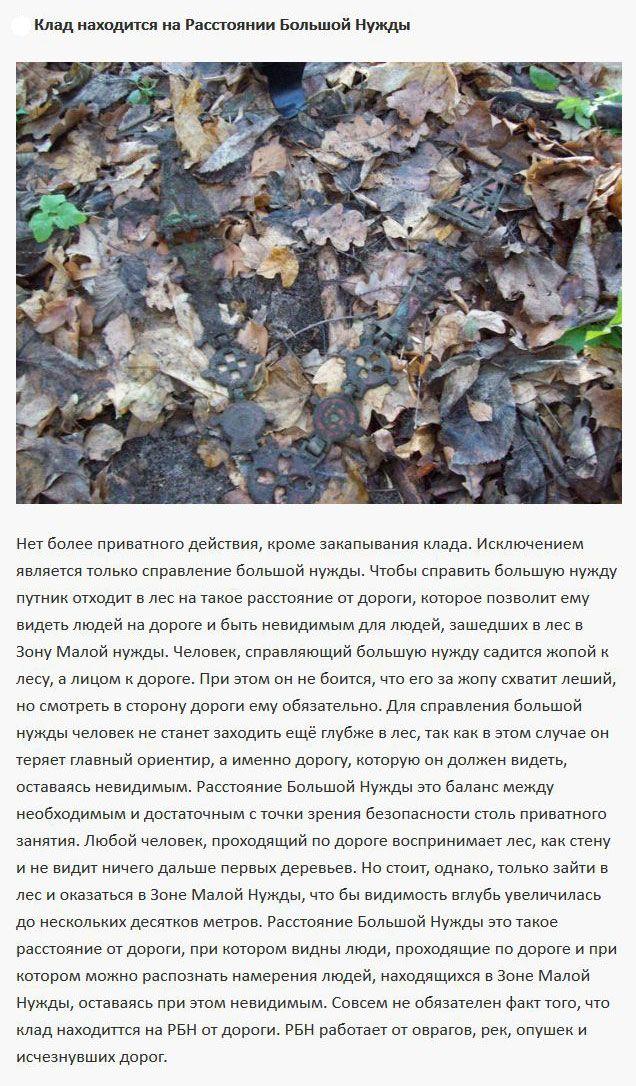 Что нужно знать о поиске кладов в лесу (7 фото)