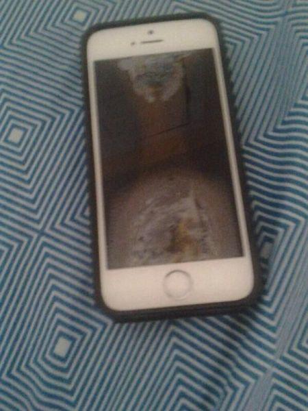 Не пытайтесь зарядить iPhone 6 в микроволновке (5 фото)