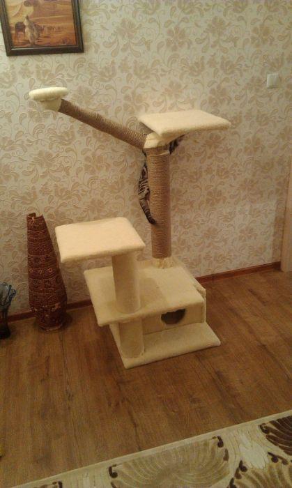 Кошачий домик своими руками (44 фото)