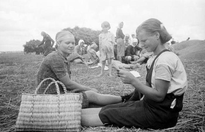 Быт украинского села начала 50-х годов (54 фото)