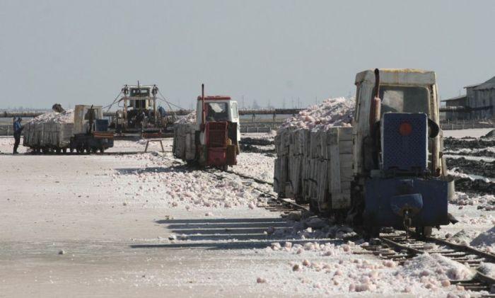 Как добывают соль в Крыму (13 фото)