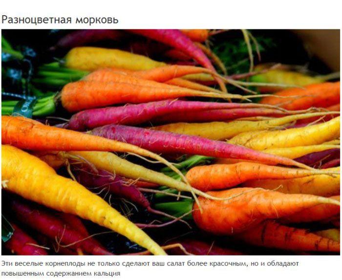 9 удивительных мутаций генной инженерии (9 фото)