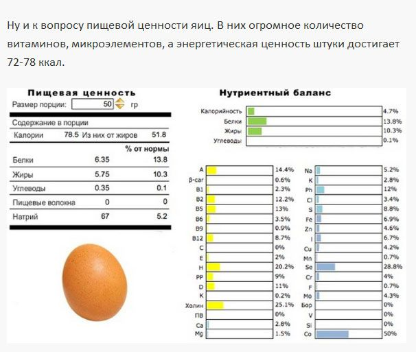 Белые и коричневые яйца - какие выбрать? (4 фото)