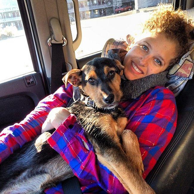 Как некогда бездомным сочинским собакам живется в США (15 фото)