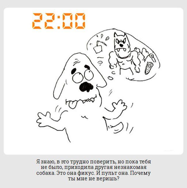 Обычный день из жизни маленькой собачки (20 картинок)