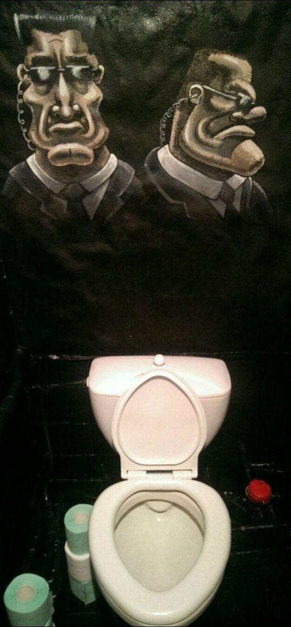 Оригинальный вариант отделки туалета (14 фото)