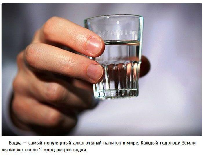Алкоголь и 25 интересных фактов о нем (25 фото)