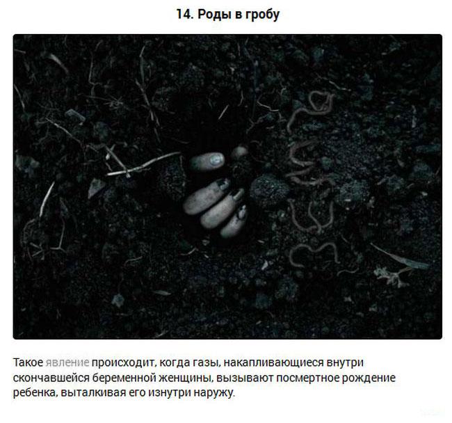 15 самых загадочных историй и явлений (16 фото)