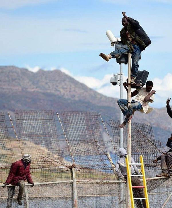 İspanya Sınırında Çit Üzerindeki Afrikalılar (32 fotoğraf)