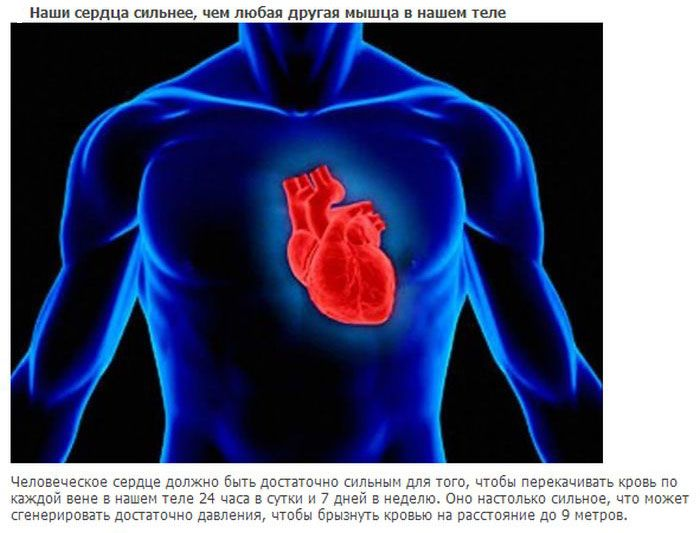 Топ-20 фактов о нашем теле (20 фото)