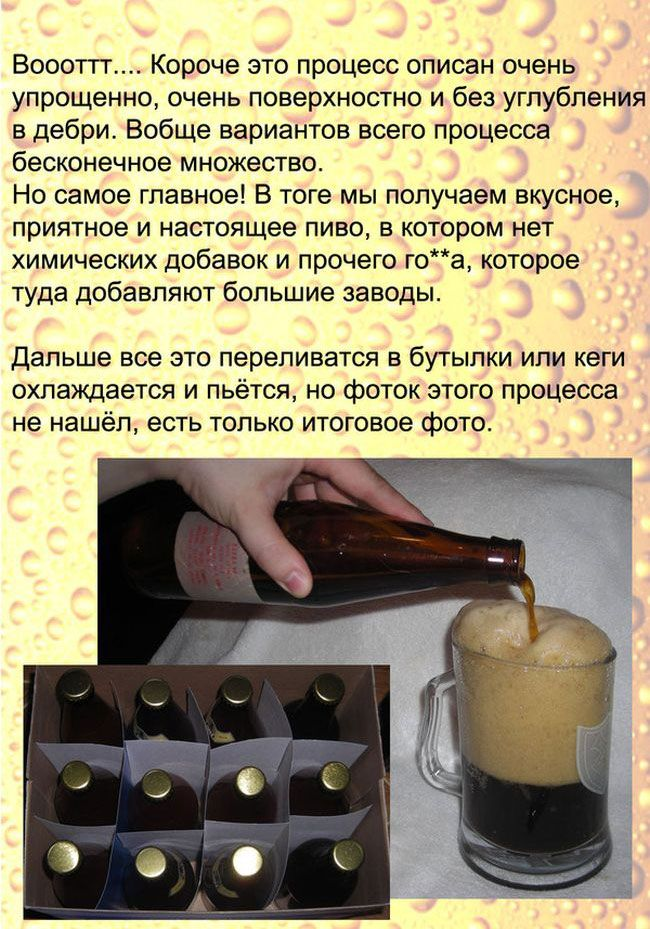 Рецепт настоящего пива (13 фото)