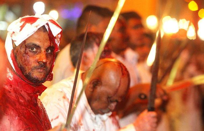 Кровавый праздник мусульман-шиитов (15 фото)