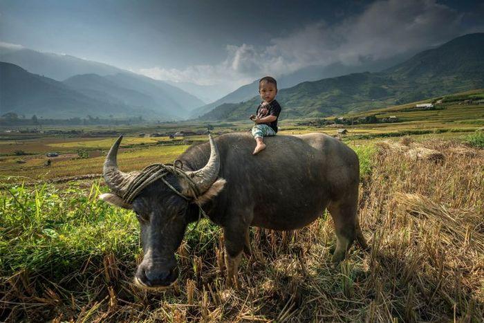 Лучшие фотографии человека на фоне природы (70 фото)