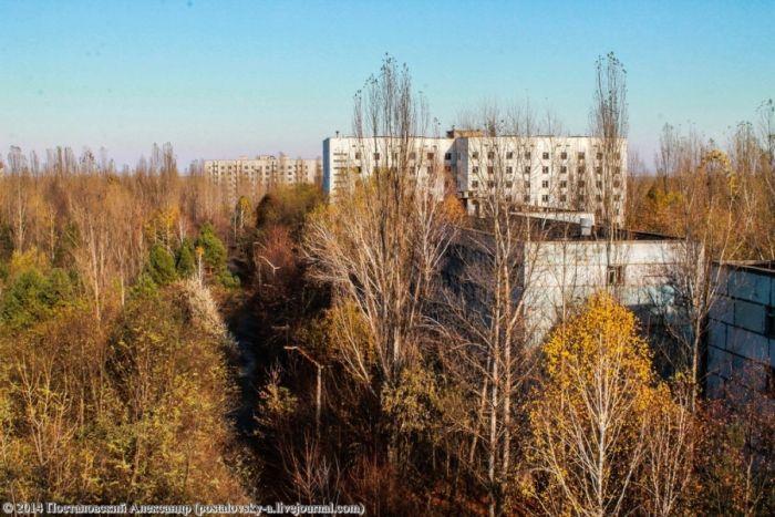 Осенняя пора в Припяти (25 фото)