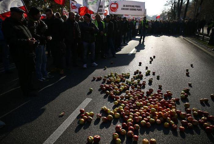 Фермеры Европы протестуют против санкций (10 фото)