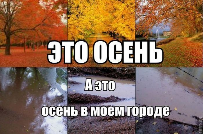 Прикольные картинки (93 фото)