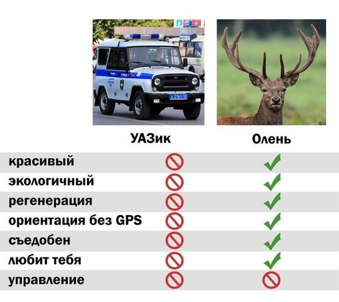 Полицейские могут пересесть на служебных оленей (2 фото)