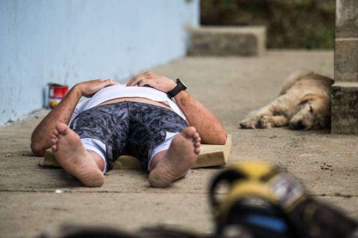 Бездомная собака присоединилась к спортсменам (20 фото)
