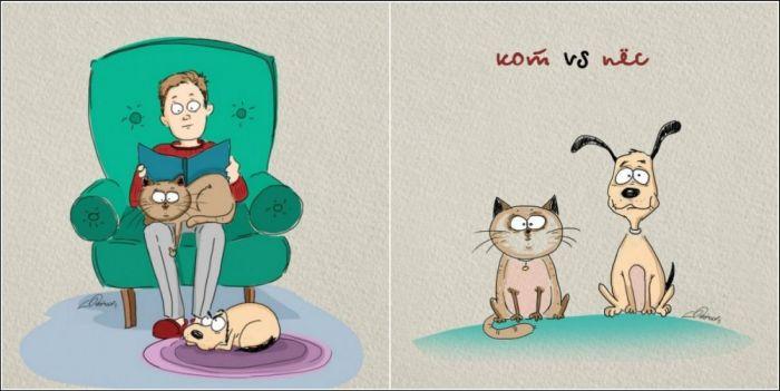 Как выглядят собака и кошка в одинаковых ситуациях