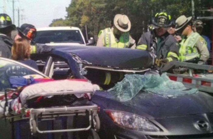 Одно из возможных последствий телефона за рулем (9 фото)