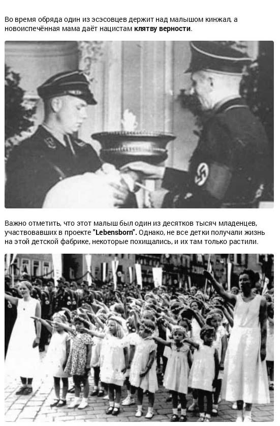 Страшные преступления военного времени (19 фото)