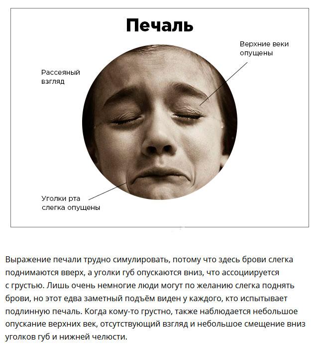 Как понять эмоциональное состояние собеседника по выражению лица (7 фото)