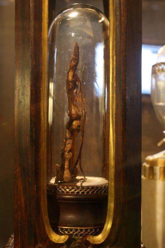 Средний палец Галилео Галилея в музее Флоренции (6 фото)