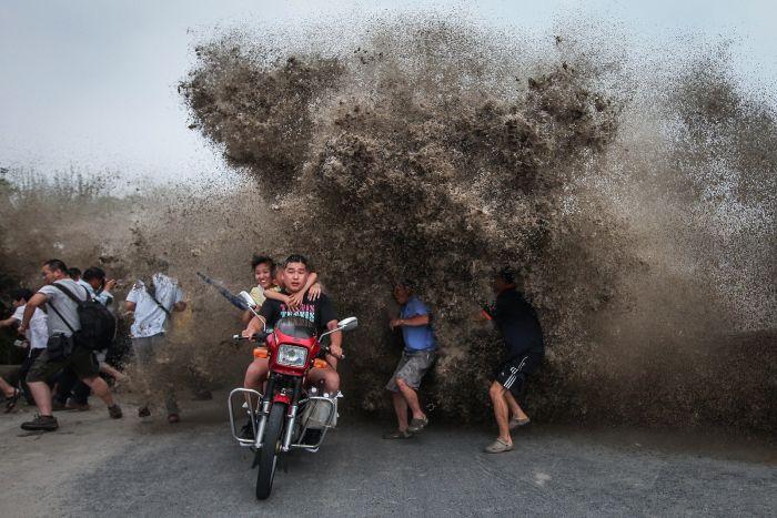 74 фотографии из новостных репортажей этого года (74 фото)