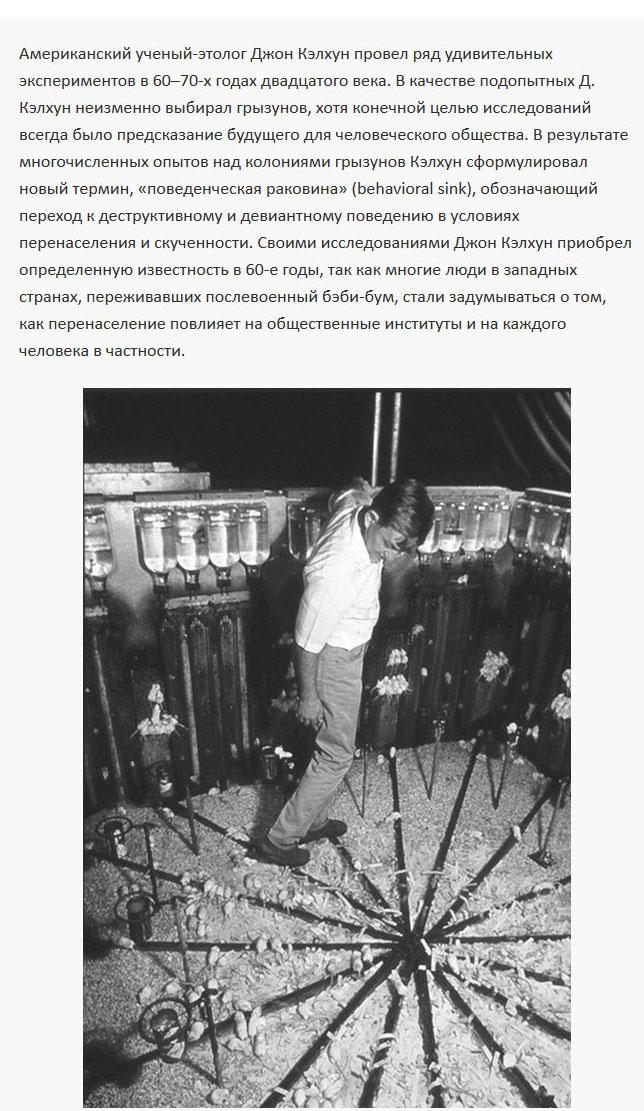 Интересный эксперимент американского ученого (7 фото)