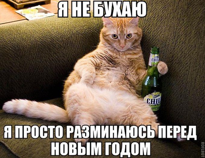 podborka_53.jpg