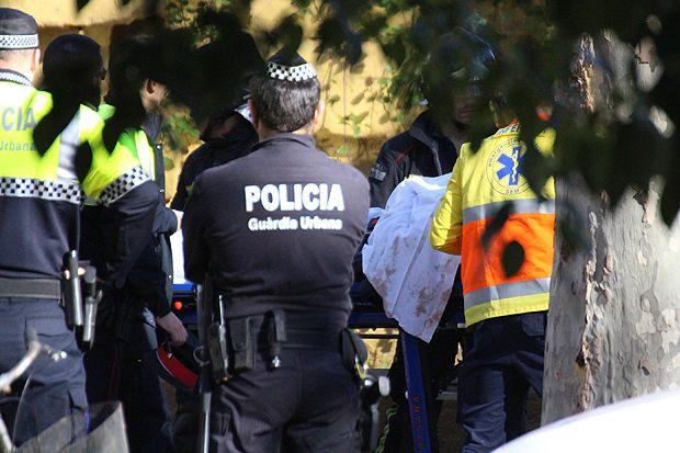 В Барселоне мужчина прыгнул в вольер со львами (10 фото)