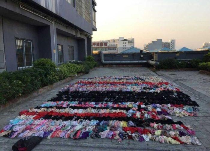 Вор хранил 2000 предметов женского нижнего белья над потолком (6 фото)